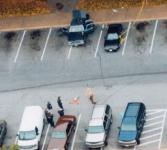 D.C._Sniper_Rest_Area_Aerial_View